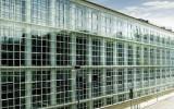 IPAP OPEN HOUSE 2021 - La psicoterapia analitica al crocevia fra tradizione e innovazione | Ivrea, 7/11/2021